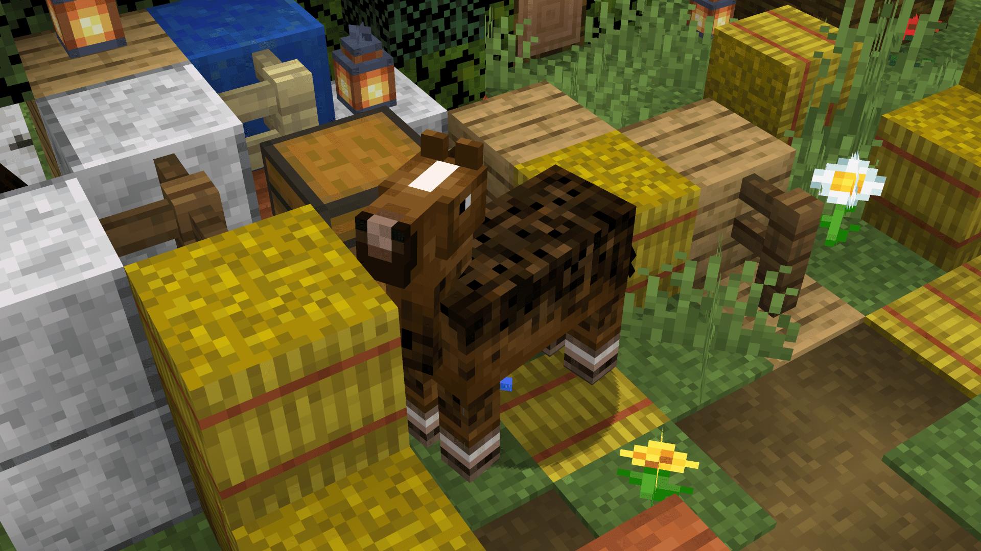 Questo è il nostro puledro che è cresciuto dal tutorial su come accoppiare cavalli su Minecraft.