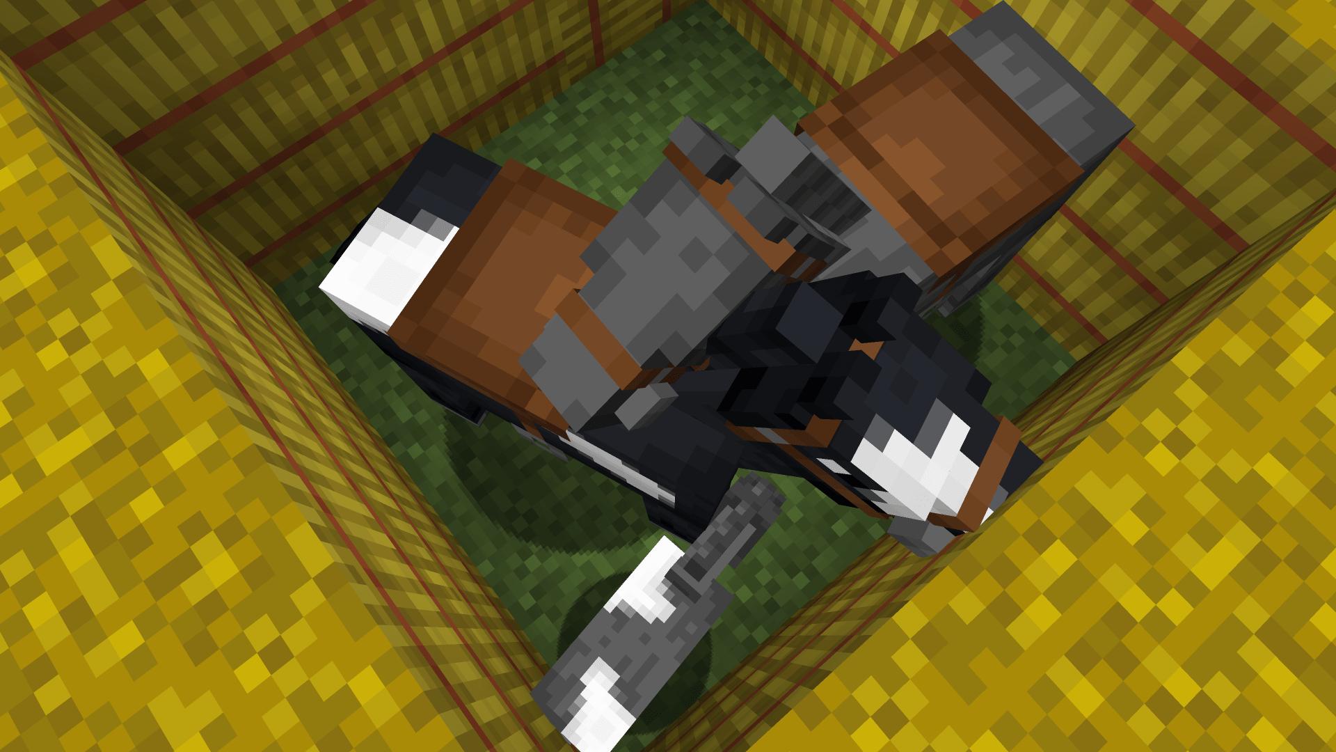 Ecco qua, finito il tutorial su come accoppiare i cavalli su Minecraft.